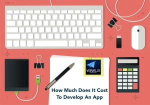 app development cost india