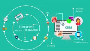 rep software development company