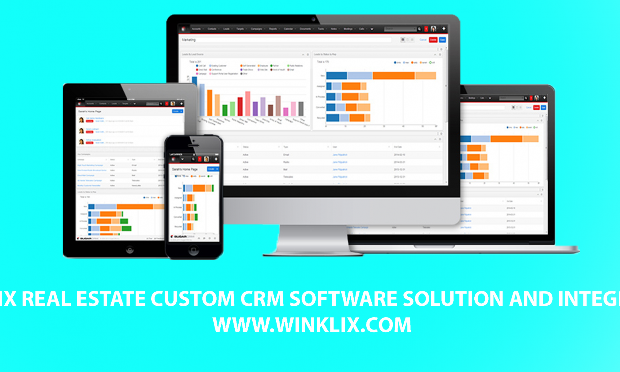 real state crm software development