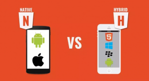 hybrid vs native app development cost