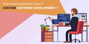custom software development company delhi
