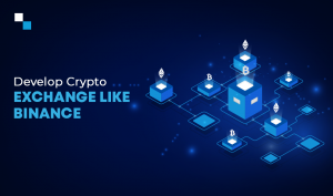 Creating a Cryptocurrency Exchange similar to Binance